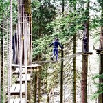 Goape Adventure Hawkshead Grizedale Tree Tops1